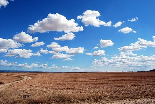 Bewaringslandbou – die bondgenoot van die produsent, grond en klimaat