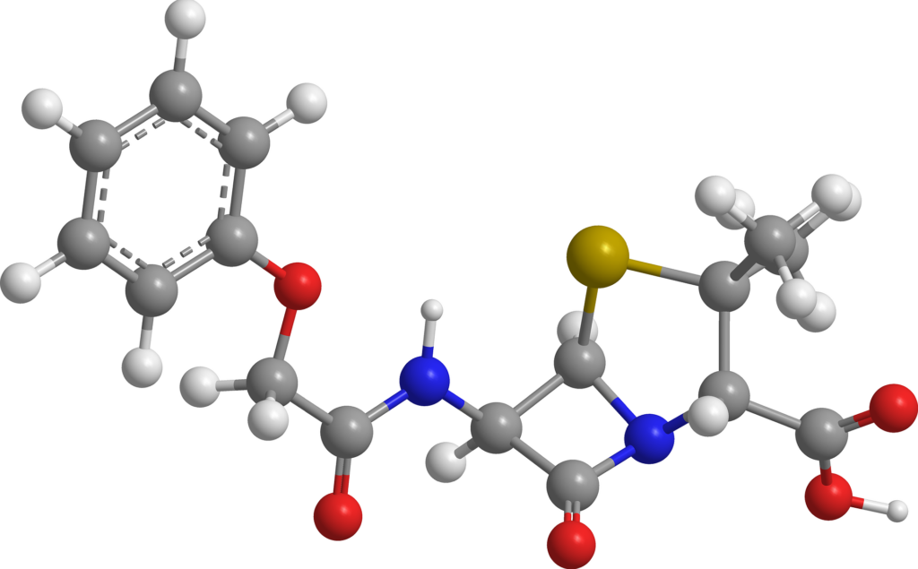 Van die plaas tot op jou vurk:  Die rol van antibiotika